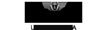 Alexia Designs Logo
